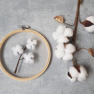 Gałązka bawełny - haft na tiulu