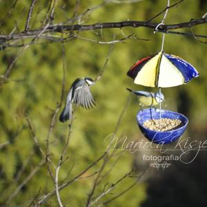 Karmnik dla ptaków ceramika