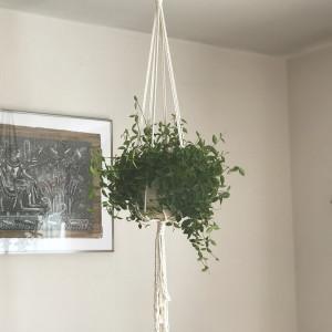 Kwietnik makrama na kwiaty duże donice