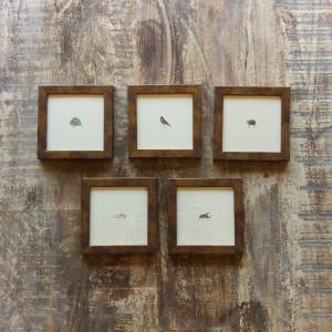 Mała Piątka Afryki, komplet pięciu miniatur
