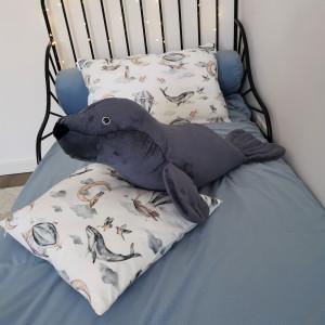 morski stworek foka