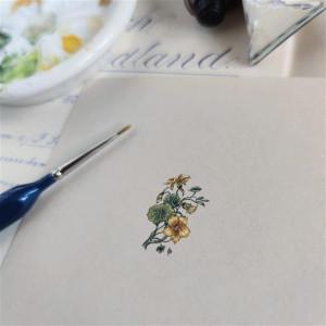 Nasturcja żółta Botanical illustration, miniatura