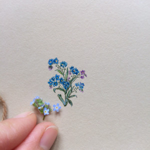 Niezapominajki, miniatura, akwarela, prezent