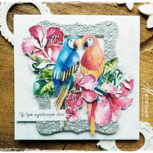 Papugi - kartka ślubna