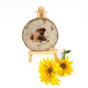 Plaster drewna dla psiarza