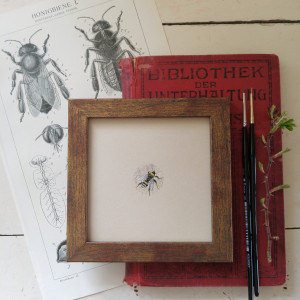 Pszczoła, Botanical illustration, miniatura