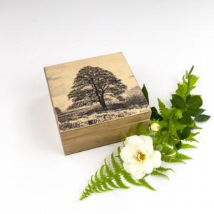 Pudełko - drzewo IV