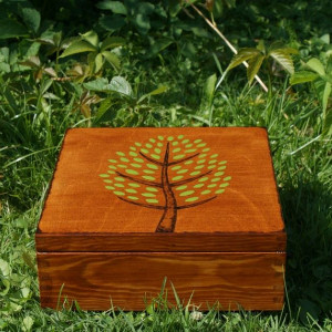 pudełko z przegródkami