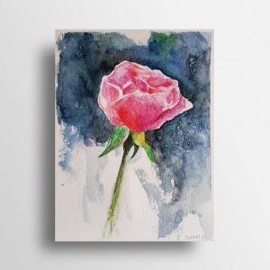 Różyczka-akwarela formatu A5