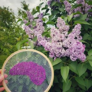 Tamborek na ścianę, haftowany na tiulu- kwiat bzu