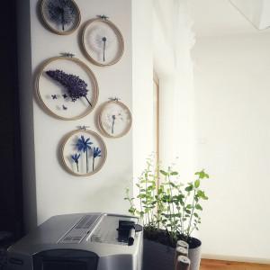 Tamborki na ścianę, haft na tiulu- dmuchawiec, bez