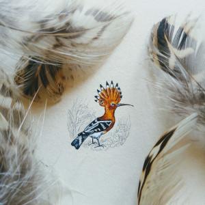 Vintage ptak, Dudek, miniatura