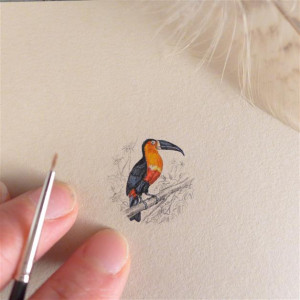 Vintage ptak, Tukan, miniatura