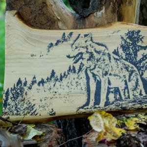 Wilk na desce świerkowej