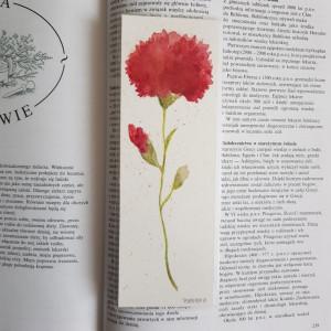 ZAKŁADKA DO KSIĄŻKI- Kwiatek