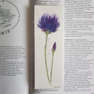 ZAKŁADKA DO KSIĄŻKI- Kwiatek I