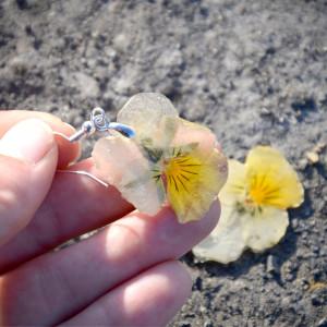 Zatopek Bratek kwiat II