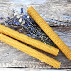 Zestaw długich świec stołowych z węzy pszczelej