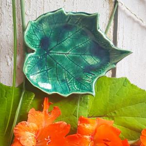 Zielony liść winogron