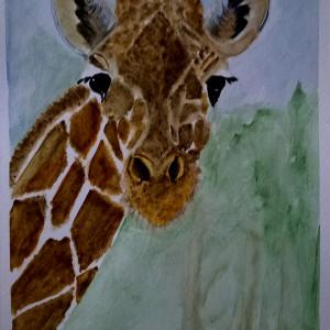 Żyrafa, akwarela. Format 18x24 cm